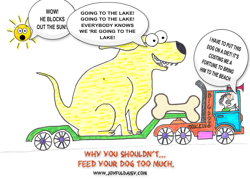 WHY YOU SHOULDN'T FEED YOUR DOG TOO MUCH