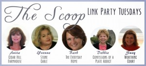 Scoop Banner Dec 2013 tues