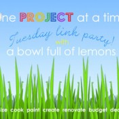 WED one-project-link-party-5