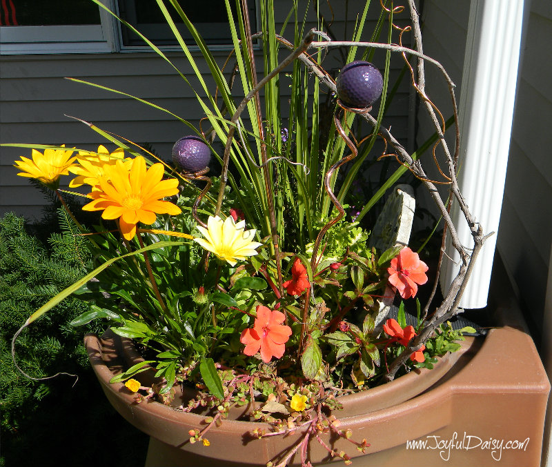 rain barrel container flowers
