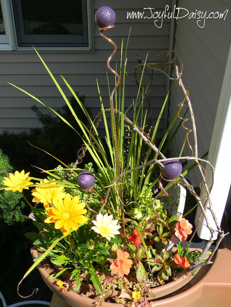 rain barrel flowers