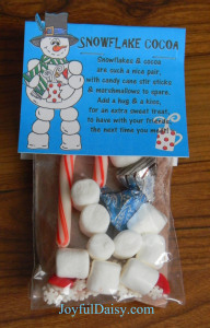 Snowflake Cocoa Gift Bags with Snowman Label