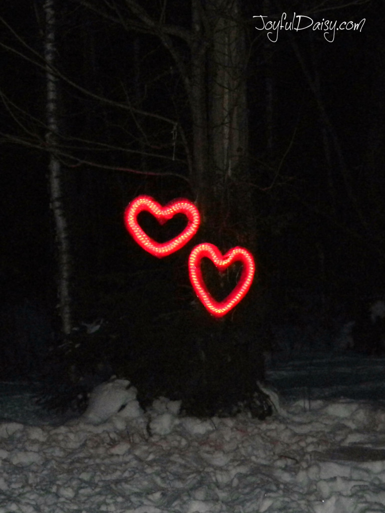 heart lights hanging in the trees night time